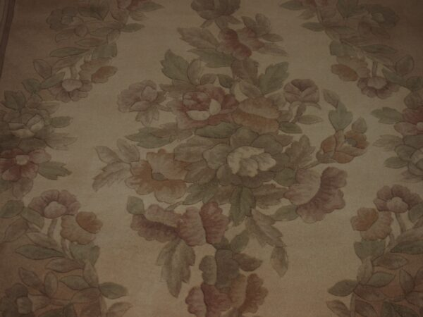 5' X 7'11'' Abusson Medallion Traditional Hand-knotted Tan Rectangle Wool Rug - Direct Rug Import   Rugs in Chicago, Indiana,South Bend,Granger